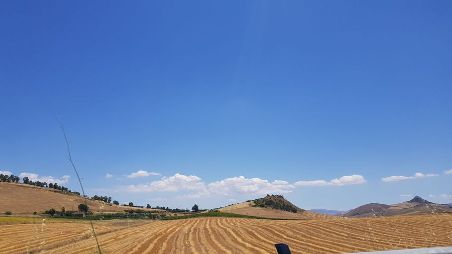 Panoramic view of agricultural field against blue sky