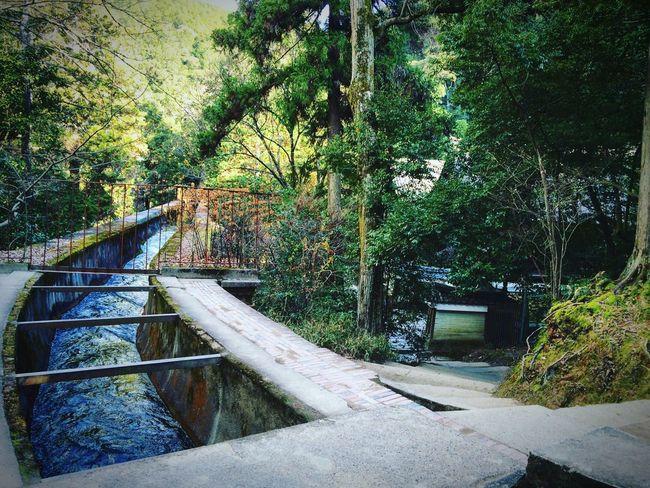 南禅院 水路閣 蹴上インクライン 京都 Kyoto Relaxing
