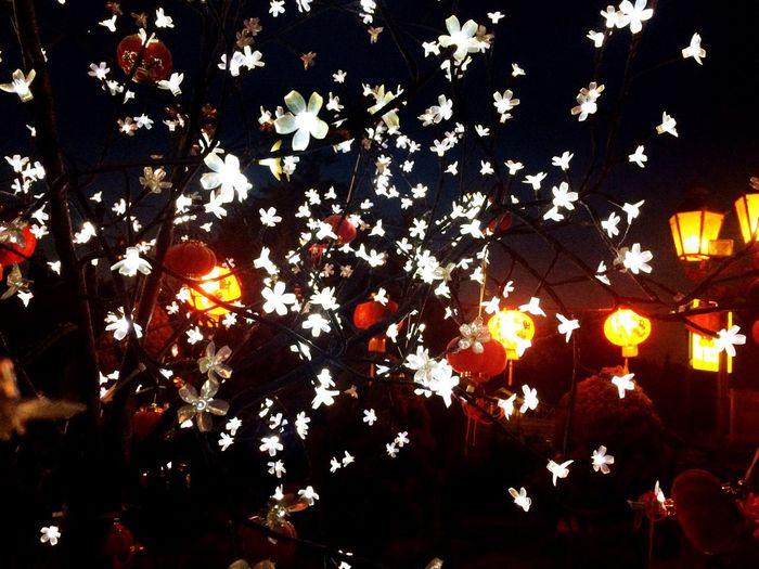 Light Flowers China Tree Sparkle LED