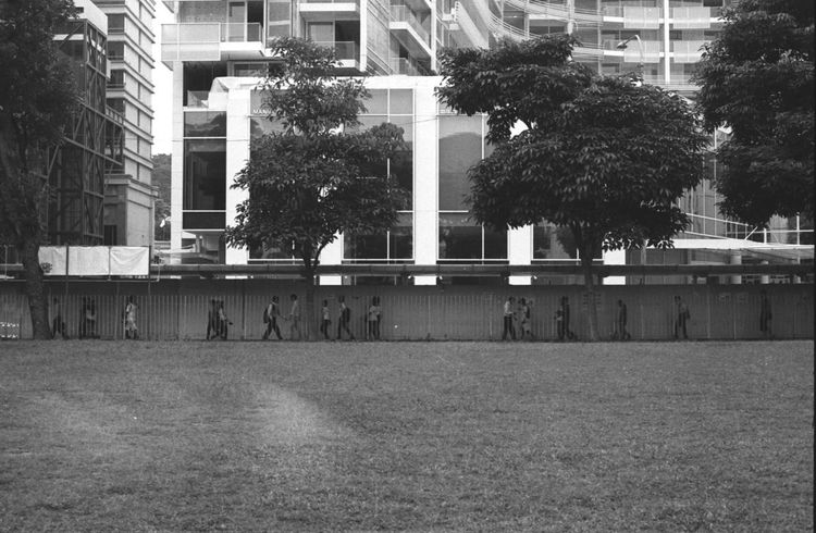singapore order 35mm Film Copy Space Evening Commute Singapore Urban Lifestyle Architecture Building Building Exterior Built Structure City City Life Commuters Daily Grind  Day Downtown District Grass Group Of People Ilford Lawn Nature Outdoors People Walking  Rat Race Tree