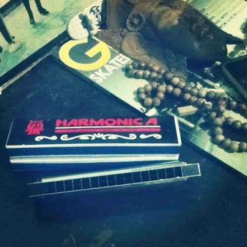 Harmonica ni hermanico Sale Selfreward