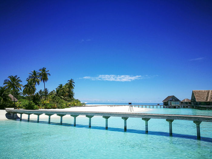 A dream honeymoon destination. Sky Tranquility Travel Destinations Outdoors Bridge - Man Made Structure Water Beauty In Nature Day Tree No People Architecture Beachlovers Beachphotography Ocean View Vacation Time DreamVacation Maldives Maldives Islands Maldives Resorts
