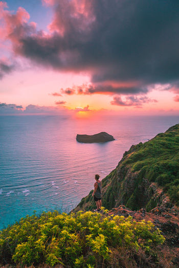 Full length of man standing by plants while looking at sea against sky during sunset