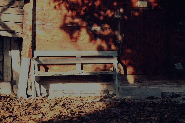Eyemphotography EyeEm Best Shots EyeEmBestPics Autumn Colors Autumn Alone Time