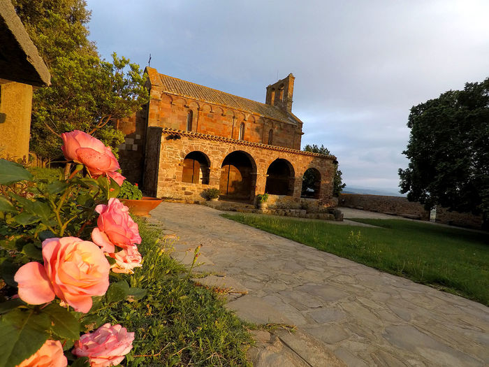 Pink flowering plant by historic building against sky