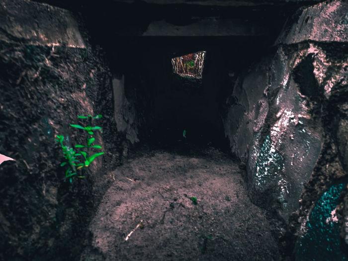 Interior of abandoned wall