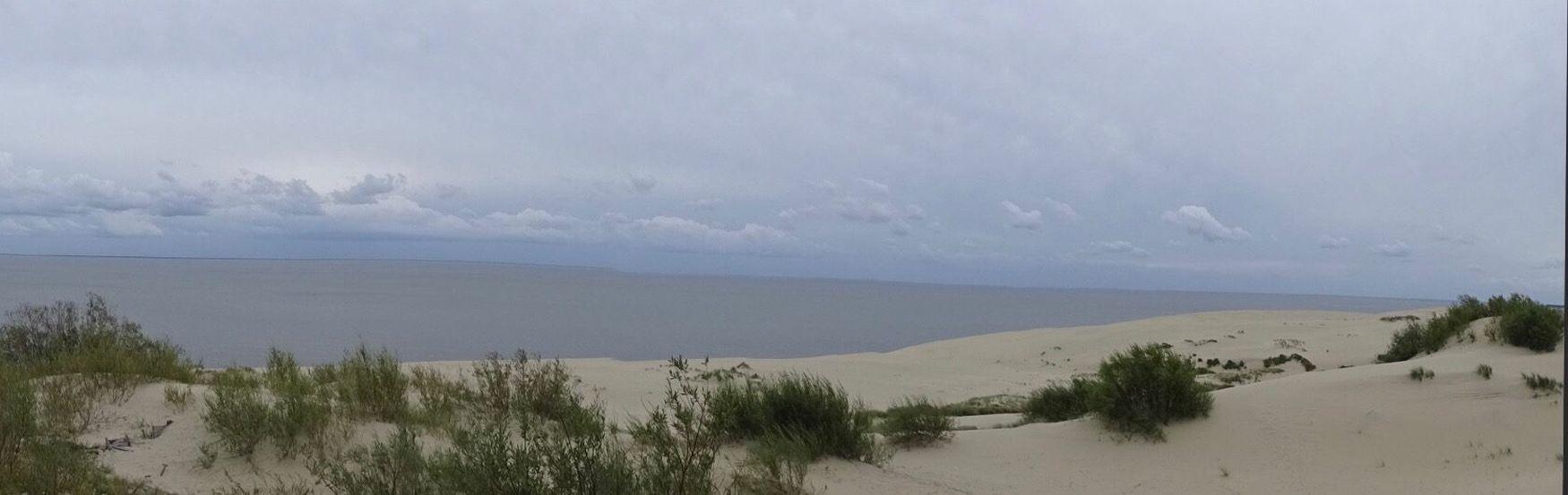 Куршская Коса балтийскоеморе куршскаякоса