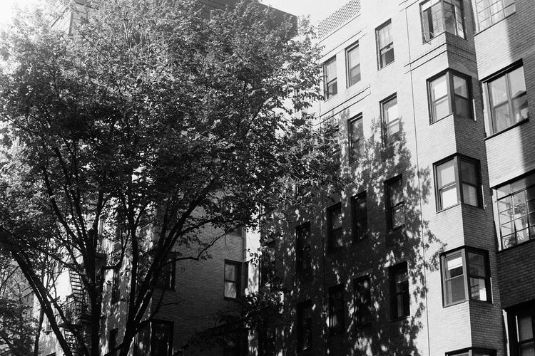 The beginning of a collection surrounding my introduction to film photography during the 2015-2016 school year. Amateurphotography Blackandwhite Brooklyn Film Film Photography Filmcamera NYC Photography NYC Street NYC Street Photography Poc Student Studying Teen Urban Urbanphotography