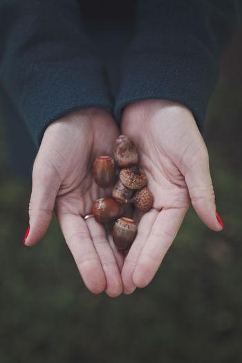 In the hands of women are acorns