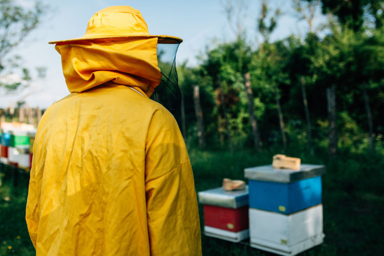 Rear view of beekeeper standing by beehives on land