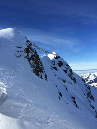 Peak Walk Snow