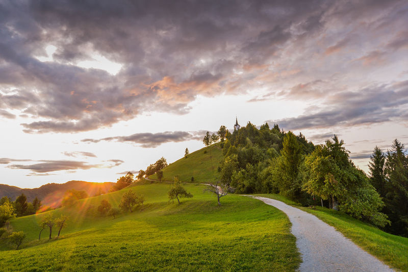 Just near my home in Ljubljana, there is a perfect hill to cool yourself in hot summer evenings. It's calle Sveti Jakob (Sanit Jacob in english) and pictures of that hill with church you have probably see in past. Very nice. Church Saint Jacob Summer Exploratorium Summertime Sunlight Sunset_collection Sveti Jakob The Great Outdoors - 2018 EyeEm Awards The Traveler - 2018 EyeEm Awards Architecture Beauty In Nature Church Architecture Cloud - Sky Environment Eveneings Field Grass Green Color Idyllic Land Landscape Nature Outdoors Plant Religion Religious  Religious Architecture Road Scenics - Nature Sky Summer Sun Sunset Tranquil Scene Tranquility Transportation Tree