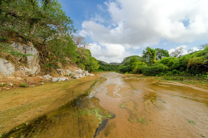 Shallow almost dry river bed in Macuira National Park in La Guajira, Colombia Clouds Colombia Country Countryside Day Dry Forest Green Guajira Laguajira Land Landscape National National Park Nature Nazareth Park Plant Rock Scenics Stone Stream Tourism Tree View