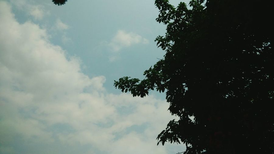天气很好 China