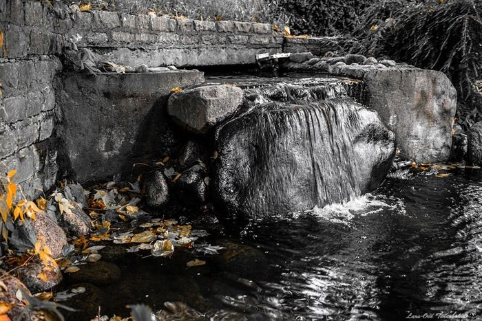 Let it Flow Autumn Nature Water Tornebohmphoto