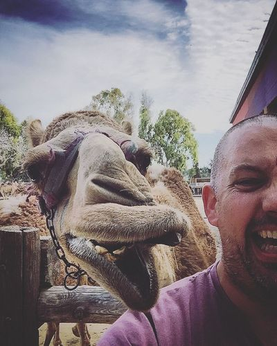 Camel Camels Selfies Desert Animal Animals Animal Kingdom Camel Riding Camel Park Give Us A Kiss Say Cheese Smile Smile For The Camera