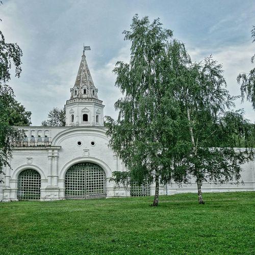 башня крепость замок монастырь Кремль ограда стена забор лес и природа русскиймузей