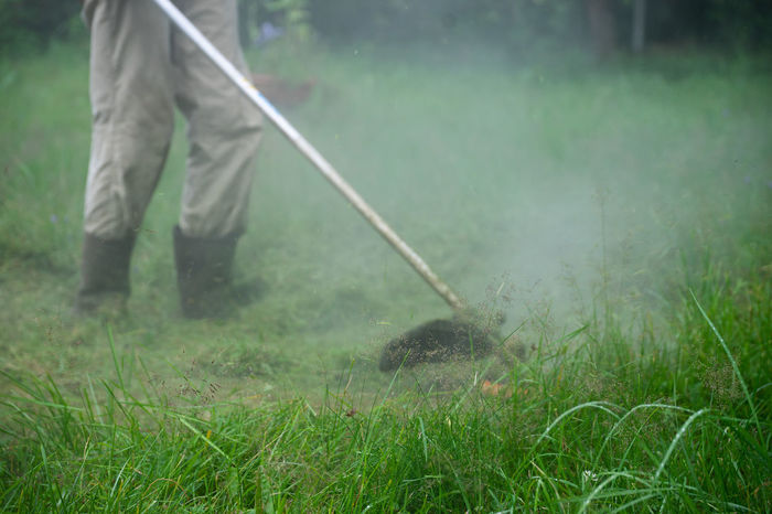 Grass Cutting Squirrel  Working Day Farmer Focus On Foreground Front Focus Garden Maintenance Gardening Gardening Equipment Grass Grass Cutter Green Color Growth Holding Land Men Motion Nature Occupation One Person Outdoors Plant Real People Working