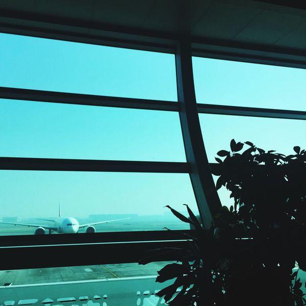 Airport Layover Good Morning World! Catching A Flight Dubaiairport