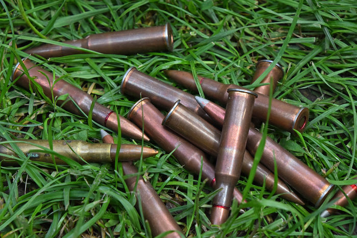 Heap of assorted 7.62 Bullets left in green grass 7.62 Field Grass Lost Abandoned Ammo Ammunition Bullet Caliber Close-up Day Grass Green Color Group Heap Lead No People Old Outdoors Round Several