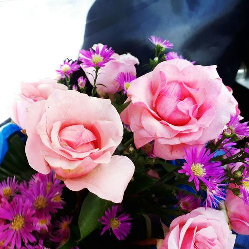 The flower 💓