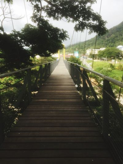 Great location for tourist The Way Forward Direction Plant Tree Diminishing Perspective Nature No People Day Sky Footpath Outdoors Transportation Beauty In Nature vanishing point Connection Railing Empty Growth Sunlight Architecture
