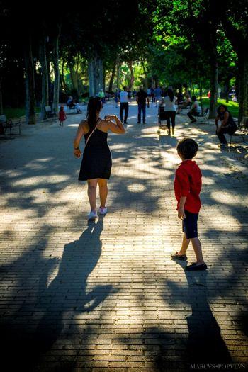 Título: Tarde de verano/Summer's afternoon Autor: Marcus Populus Lugar: Templo de Debod (Madrid) Cámara: SONY ILCE 6000 Punto F: f/5.6 Tiempo de exposición: 1/125s Velocidad ISO: 100 Distancia focal: 47mm Boys Child Family Nature Real People Sunlight Tree Women