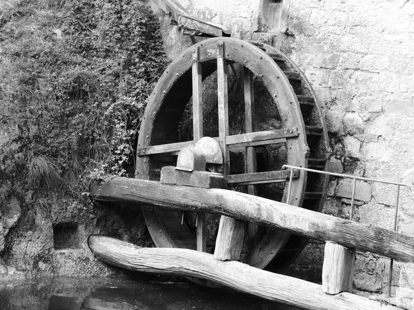 Molinetto Della Croda Animal Themes Architecture Built Structure Day Nature No People Old-fashioned Outdoors Water Wheel Watermill