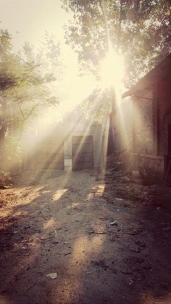 Morning Light Hometown Memories Never Say Never