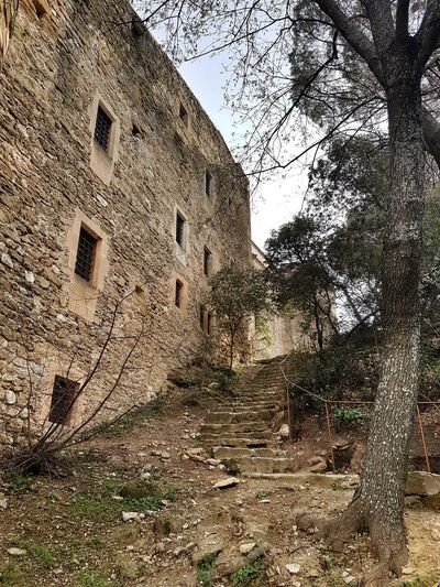 Lourmarin Provence Luberon Stairs Castle Tree Sky Architecture Building Exterior Built Structure