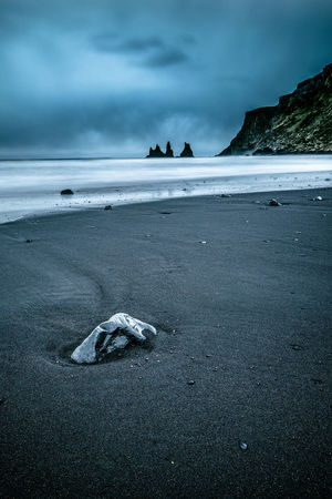 Iceland Animal Themes Animals In The Wild Beach Beauty In Nature Cloud - Sky Day Horizon Over Water Mammal Nature No People One Animal Outdoors Sand Scenics Sea Sky Tranquility Water