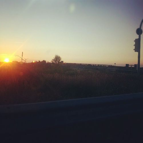 Homebound Imissyou Sunset Whatif