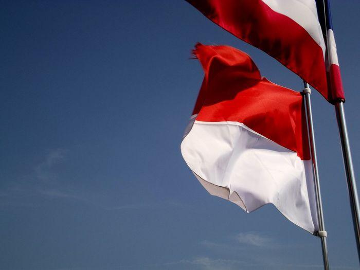Flags Flag Indonesian Flag INDONESIA Nami Island Nami Island , Korea South Korea Korea Sky Blue Sky Clear Sky