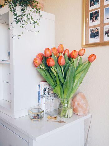 Bright Room Orange Bouquet Flower Flower Bouquet  Home Interior Spring Spring Flowers Tulip Vase