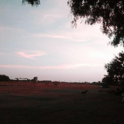 Sunset 😍💕✊ Enjoying Life