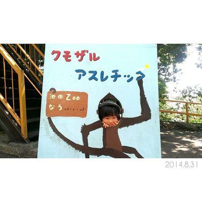 今日はまたまた池田動物園へ……♩ クモザルの檻の近くにあった、顔出しパネルでパチり✧ * 今日も暑かったけど、たくさん遊んだね◎ * 明日から9月。✲ 来月もどうぞ宜しくお願いします……♥ 1歳10ヶ月 男の子 息子 子供 ig_kidskidsstagramig_oyabakabuchildrenilovekidszoo池田動物園クモザル親バカ親ばか部