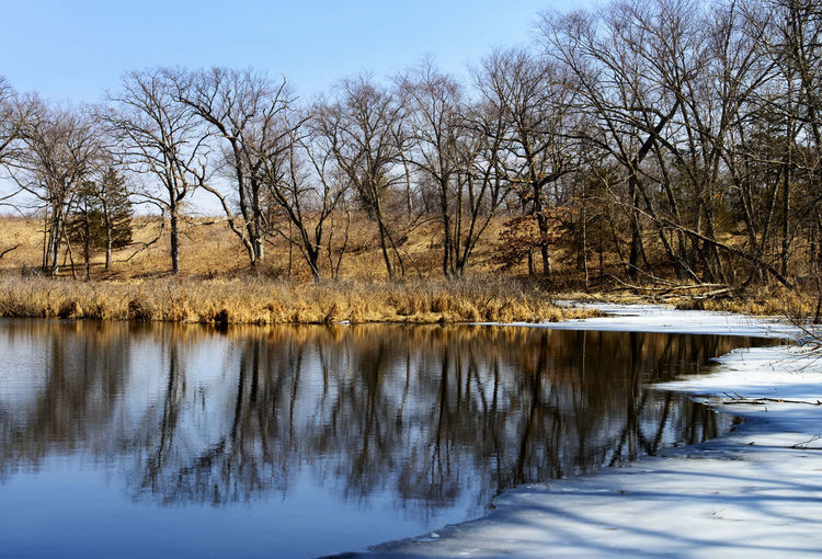 Bare trees by lake against sky during winter