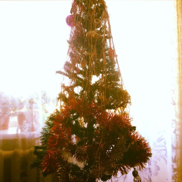 Spruce Happy New Year Tinsel  ёлка новыйгод мишура First Eyeem Photo