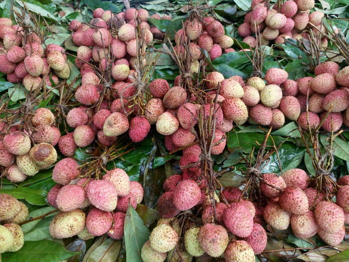 Abundance Backgrounds Close-up Day Food Freshness Full Frame Green Color Growing Growth Healthy Eating Heap Large Group Of Objects Leaf Lychee Market Stall Nature No People Organic Outdoors Plant Ripe Rural Scene