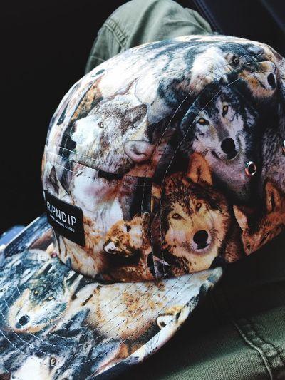 My hat Wolf Urban SittinOnMusic