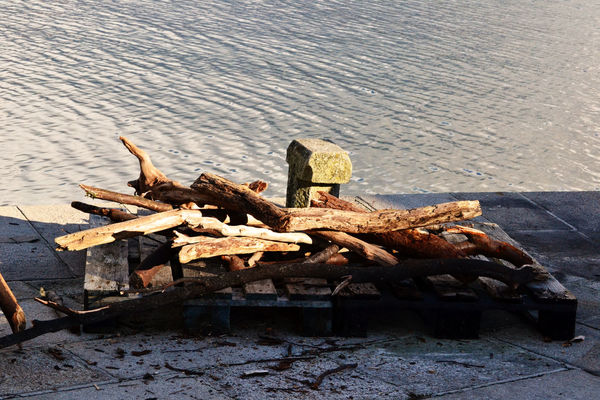 Wood Woods Woodpile No People Outdoors Water No People Outdoors Beauty In Nature Browns Tranquility Tranquil Scene Sea And Sky