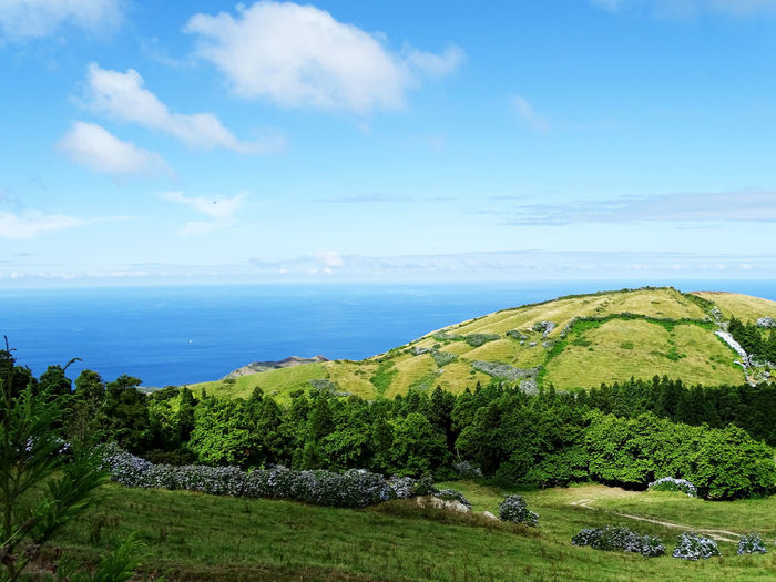 Azores Beauty In Nature Landscape Sea Water Sky Horizon Over Water Grass Cloud - Sky Countryside Tranquil Scene Idyllic Ocean Coast Tranquility