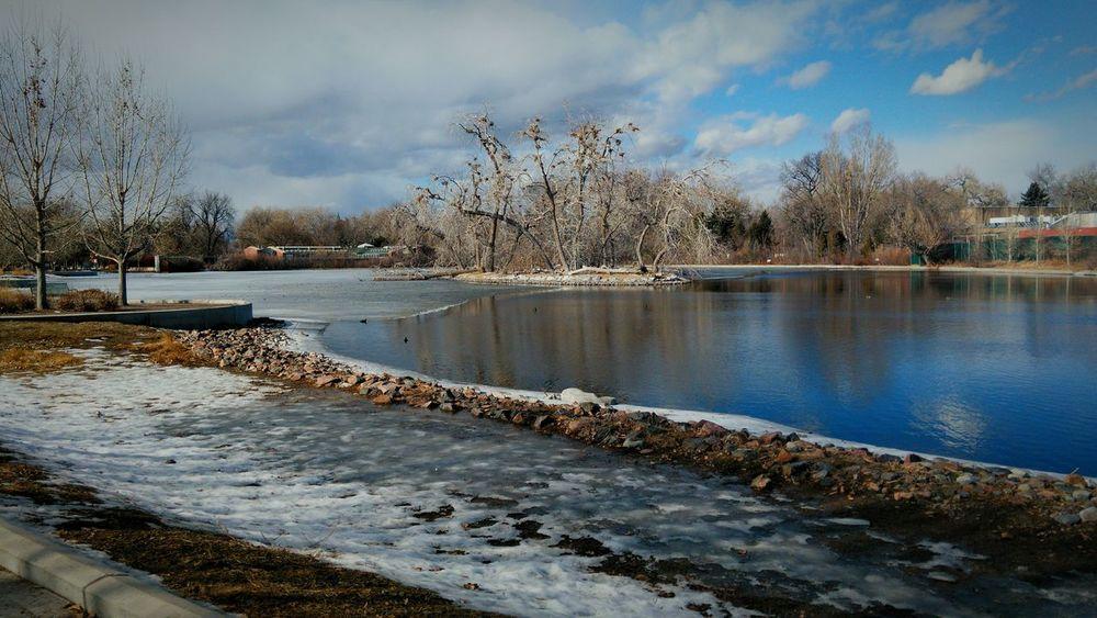 Frozen Lake Favorite Places Favorite Tree Reflections Reflection_collection Water Reflections Winter Bird Nests