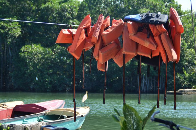 Life jackets hanging over lake against trees