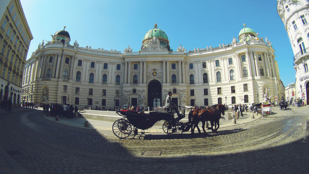 Architecture Architecture Austria Austria ❤ Building Exterior Built Structure City Clear Sky Clear Sky Day Domestic Animals Horse Horse Cart Horseback Riding Horses Mammal Men Outdoors People Real People Sky Travel Destinations Vienna Wide Angle