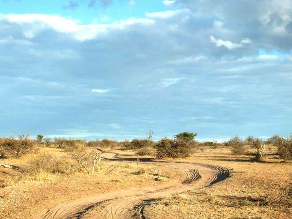 Landscape Outdoors Nature Sky Scenics Beauty In Nature Nature Photography Backgrounds Wilderness Windy Road No People Botswana Africa