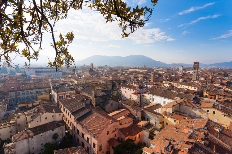 Lucca aerial view, Italy Architecture Built Structure Building Exterior Building Residential District City Sky Cityscape Crowded Crowd Day Outdoors TOWNSCAPE Lucca Lucca Italy Italy Italy❤️ Tuscany Cityscape Town TOWNSCAPE Guinigi Tower Landscape_Collection Landscape_photography Aerial View