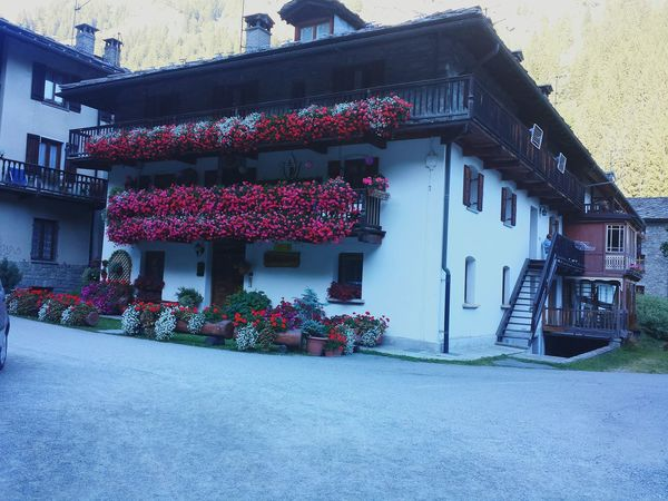 Architecture Built Structure NatureOutdoors Day Valle D'aosta Italy Love Flowers Red Nofilter Peace Freedom Like4like