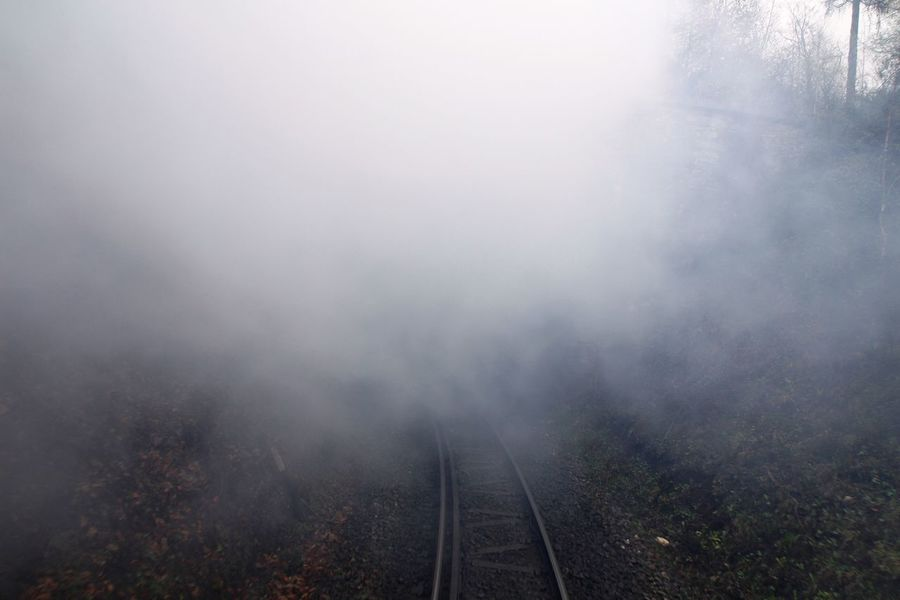 going OUT of the back... Beauty In Nature Brocken Brockenbahn Day Fog Harz Landscape Look Back Narrow-gauge Railway Nature No People Outdoors Pollution Of The Environment Railway Railway Track Railway Tunnel Scenics Sky Steam Steam Train Transportation Transportation Tree Tunnel