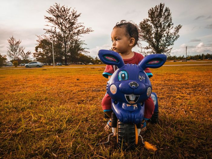 Fall season Kids Toddler  Baby Boy Season  Autumn Bike Outdoors Outside Potrait Perspective Children Son Deep Thoughts Tree Child Smiling Childhood Rural Scene Happiness Cheerful Males  Agriculture Front View Field Blade Of Grass Grass Area EyeEmNewHere Autumn Mood